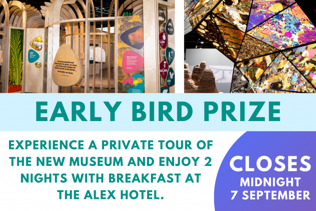Lottery Early Bird Prize - tour the New Museum